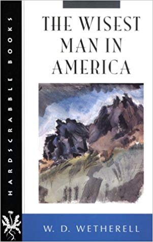 Wisest man in America book cover
